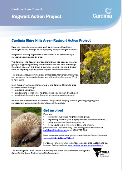 Image of Ragwort Action Project