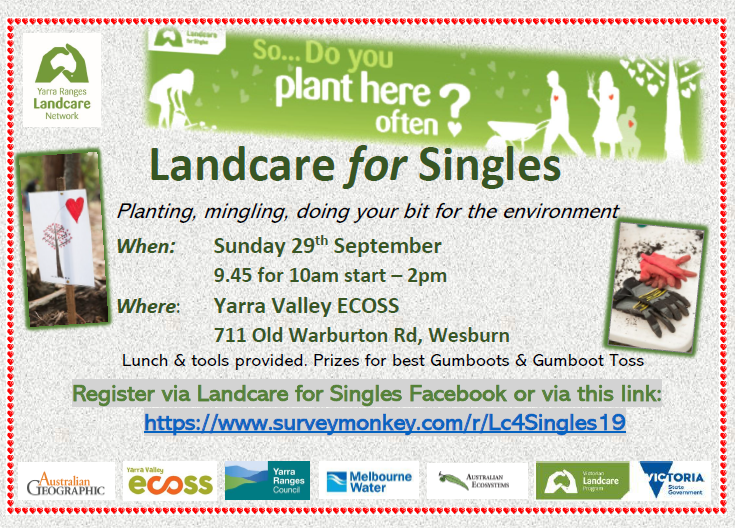 Image of Singles flyer